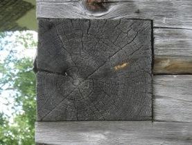 Северная древесина.
