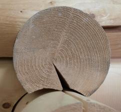 Костромская древесина.
